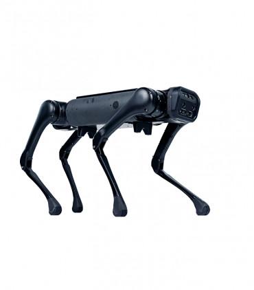 Aliengo Robot cuadrúpedo